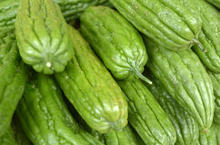 Asian bitter cucumber at a market in Chinatown Royalty Free Stock Photography