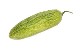 Asian Bitter Cucumber on White Stock Photo
