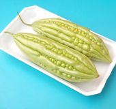 Asian bitter cucumbers. Some fresh asian bitter cucumbers in green Stock Images