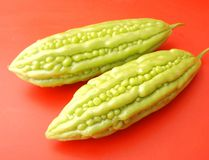 Asian bitter cucumbers. Some fresh asian bitter cucumbers in green Royalty Free Stock Photos