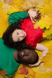 Asian and black on autumn leaves Stock Photo