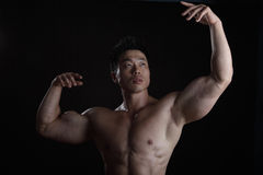 Asian Body Builder Royalty Free Stock Image