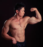 Asian Body Builder flexing left bicep Stock Photo