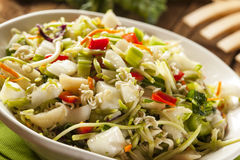 Asian Bok Choy and Ramen Salad Stock Image