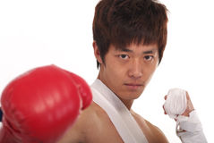 Asian boxer Royalty Free Stock Image
