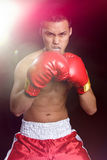 Asian Boxer Man. Wearing boxing gloves Royalty Free Stock Photography