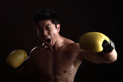 Asian boxer punching and yelling Royalty Free Stock Image