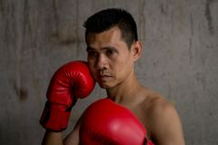 Asian boxer with red glove standing. Against cement wall Stock Photos