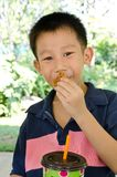Asian boy eating muffin Stock Photos