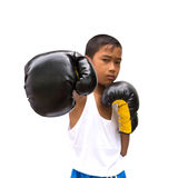 Asian boy. Focus of gloves boxing punch from asian boy Royalty Free Stock Image