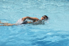 Asian boy front crawl swims in swimming pool Royalty Free Stock Images