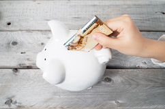 Asian boy hand inserting a hundred dollars bank note. Into white piggy bank  against wooden grey background Stock Image