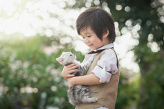 Asian boy  holding american short hair  kitten. Cute Asian boy  hugging american short hair  kitten with sunshine in the park Royalty Free Stock Photo