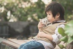 Asian boy  holding american short hair  kitten Stock Photography