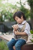 Asian boy  holding american short hair  kitten Royalty Free Stock Images