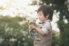 Asian boy  holding american short hair  kitten Royalty Free Stock Image
