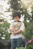Asian boy  holding american short hair  kitten Royalty Free Stock Photos