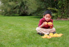 Asian Boy holding two pumpkins Stock Photography