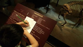 Asian boy lecturing infomation of dinosaur exhibition at prehistoric museum Stock Photography