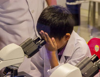 Asian boy looking through microscope stock photography