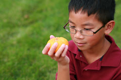Asian boy looking at mini pumpkin Stock Photo