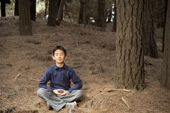 Asian boy meditating in pine forest Royalty Free Stock Images