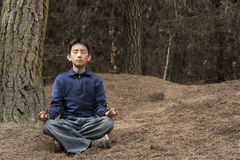 Asian boy meditating in pine forest Royalty Free Stock Photography