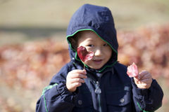 Asian boy picking up red leaf Stock Photography