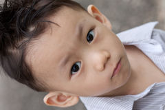 Asian boy portrait Royalty Free Stock Image