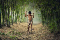 Asian boy practicing bamboo walking on bamboo forest. royalty free stock images