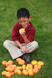 Asian boy with pumpkins Stock Image