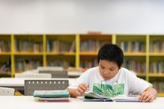 Asian boy reading a book in a library stock image