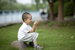 Asian boy sitting on the rock playing grass Royalty Free Stock Images