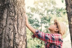 Asian boy touching big tree color of hipster tone selective soft focus. Concept nature and human protect environment Royalty Free Stock Photos