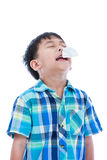 Asian boy using tissue to wipe snot from his nose. Isolated on w Stock Image