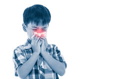 Asian boy using tissue to wipe snot from his nose. Isolated on w Stock Photo