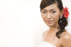 Asian bride Stock Images