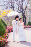 Asian Bride and Groom on Natural Background Stock Photos