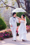 Asian Bride and Groom on Natural Background Royalty Free Stock Photography