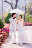 Asian Bride and Groom on Natural Background Stock Photo