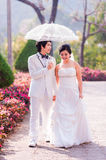 Asian Bride and Groom on Natural Background Royalty Free Stock Photo