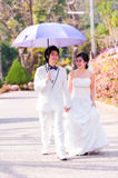 Asian Bride and Groom on Natural Background Stock Image