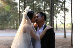 Asian bride in lovely wedding dress kisses her groom in a pine forest Royalty Free Stock Photos
