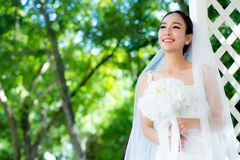 Asian bride at outdoor in a morning. The asian bride at outdoor in a morning Stock Image