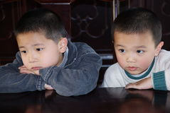 Asian brothers Stock Photography