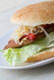 Asian Burger Stock Images