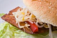 Asian Burger Royalty Free Stock Images