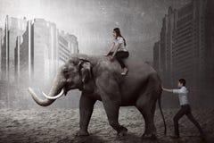 Asian business man push elephant Stock Photo