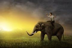 Asian business man riding elephant Royalty Free Stock Photo