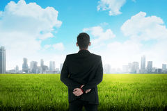 Asian business man standing on green meadow Stock Photo